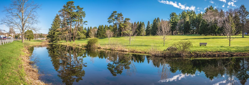 Beautiful Pond Reflections stock image