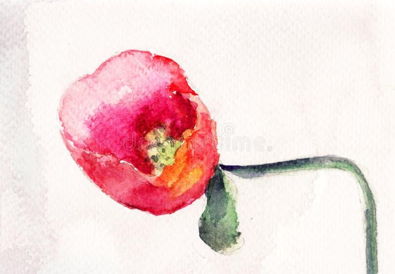 Download Beautiful Poppy flower stock illustration. Illustration of floral - 27436755