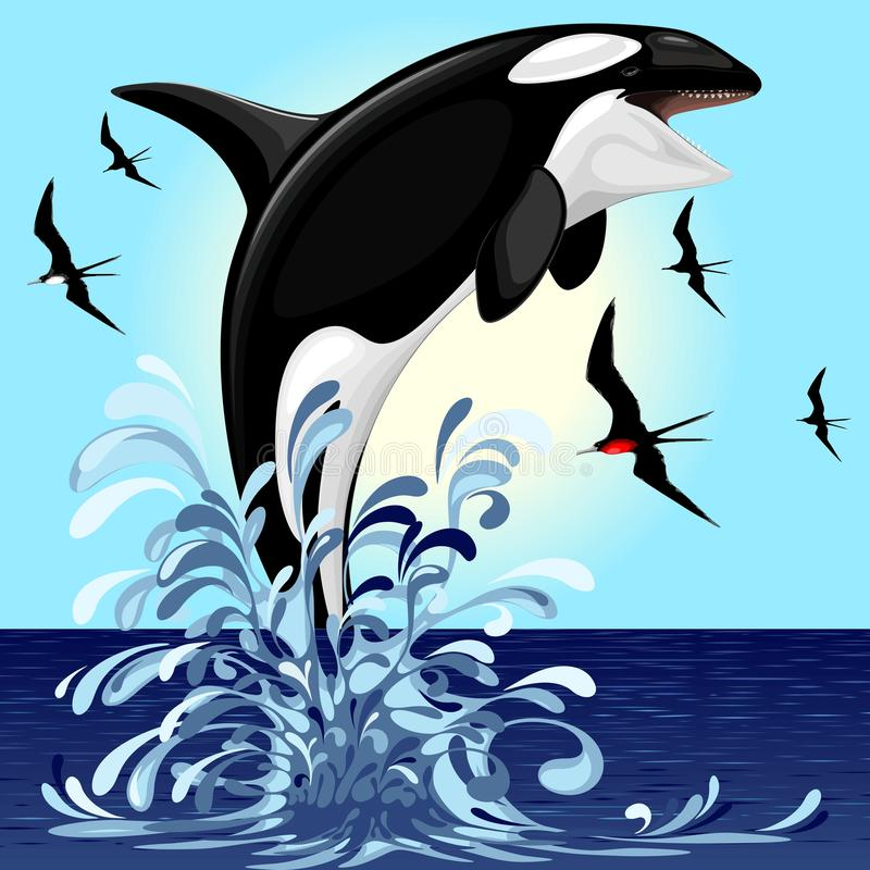 Killer Whale Jumping in Water Poster Wild Beautiful Animal Picture Ocean Sea