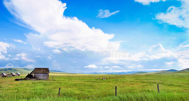 Beautiful prairie landscape in Alberta, Canada royalty free stock images