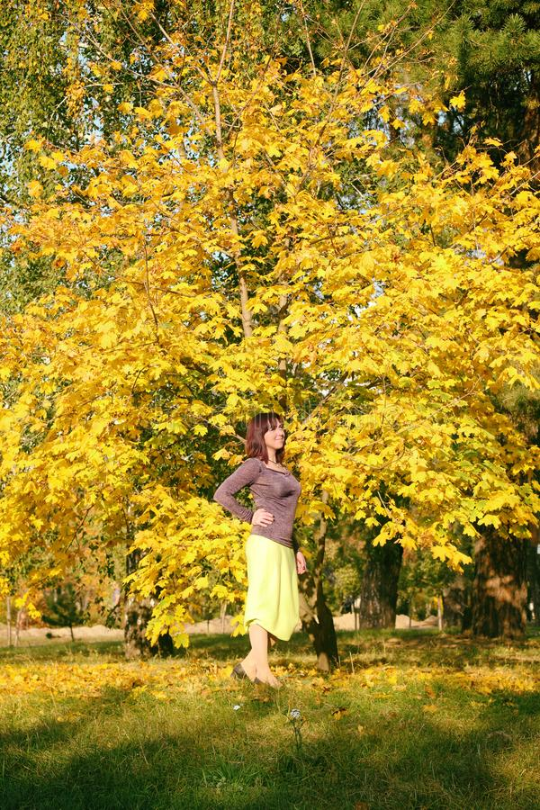 Beautiful pregnant girl autumn in the Park.Girl in yellow dress and blue hat. Girl holding a bouquet of yellow leaves. stock photos