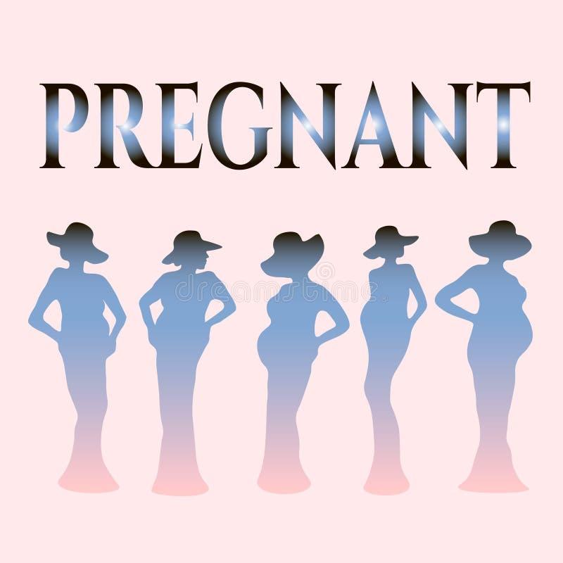Beautiful pregnant, silhoette stock photos