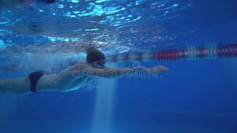Beautiful professional swimmer doing butterfly stroke in pool with rich blue water, shot from underwater stock photo