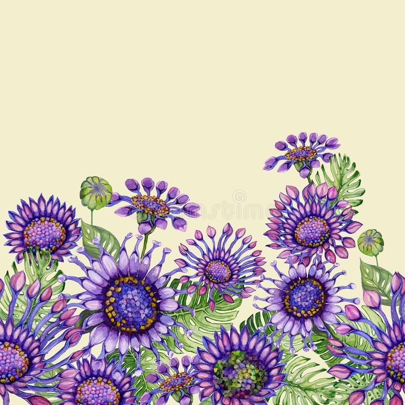Beautiful purple African daizy flowers with exotic leaves on light yellow background. Seamless floral pattern. Hand painted watecolor illustration. Fabric royalty free illustration