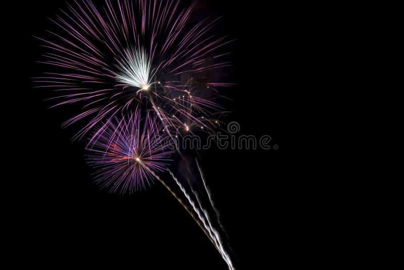 Beautiful Purple Fireworks Bursts Black Sky Royalty Free Stock Photo