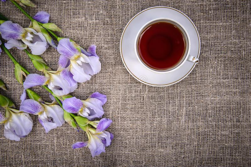 Beautiful purple flowers irises and a cup of tea on a canvas background. Beautiful purple flowers irises and a cup of tea on a gray canvas background, top view stock images