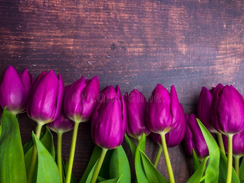 Beautiful purple flowers tulips on old wooden background royalty free stock photography