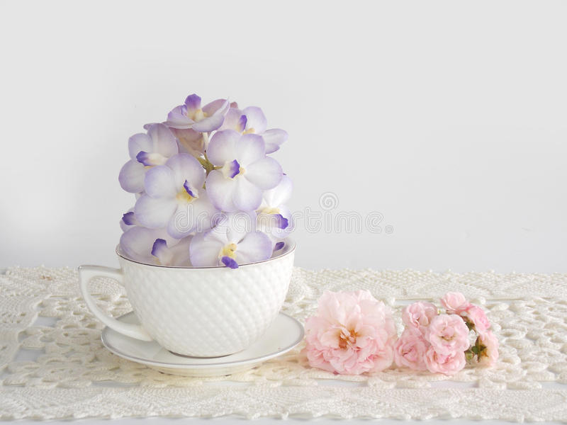 Beautiful purple orchid flower with coffee cup. On white background stock image