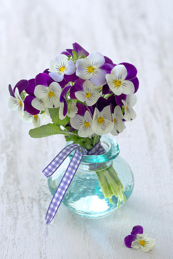 Beautiful purple pansy flowers. Photo of a beautiful purple pansy flowers in a glass vase on a wooden table royalty free stock photography