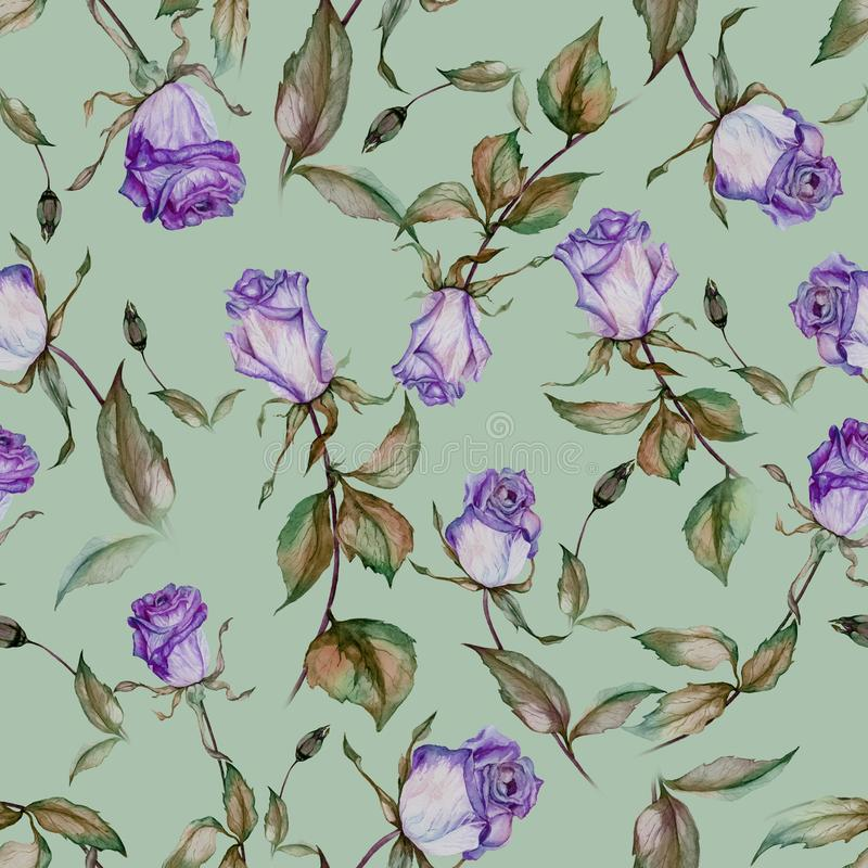 Beautiful purple roses on stems with leaves on mint green background. Seamless floral pattern. Watercolor painting. Hand drawn and painted illustration. Fabric vector illustration