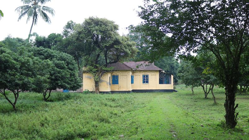 Beautiful Quarter House in Rangpur Carmichael College Area inside Rangpur, Bangladesh. Small home in green tree stock photos