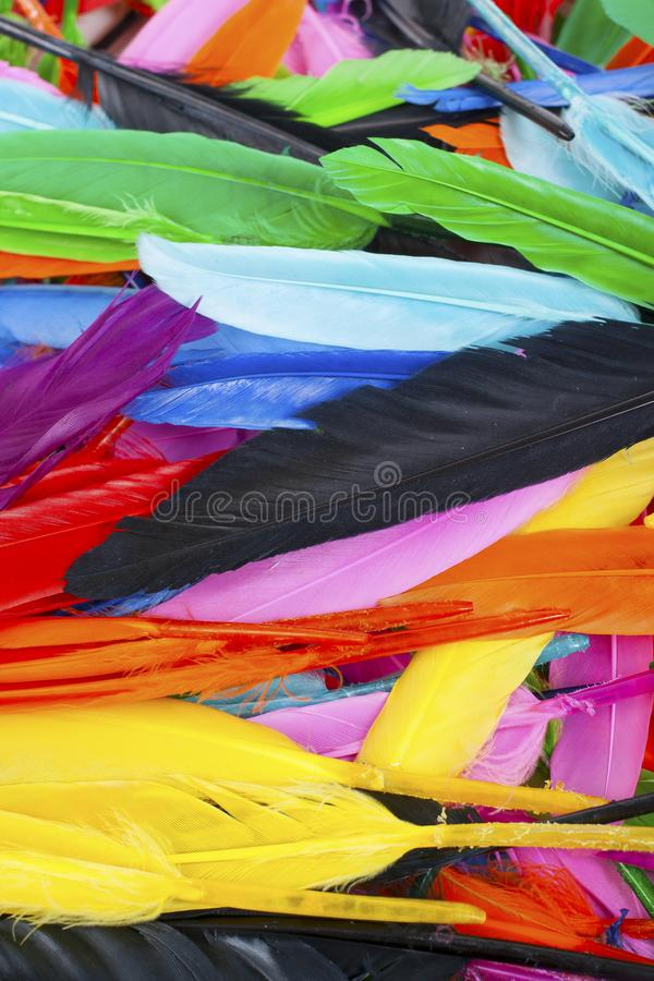 Beautiful rainbow color colored bird feathers. Parrot colors goose duck colorful painted feathers. Feather texture. Background or wallpaper for any concept stock photography