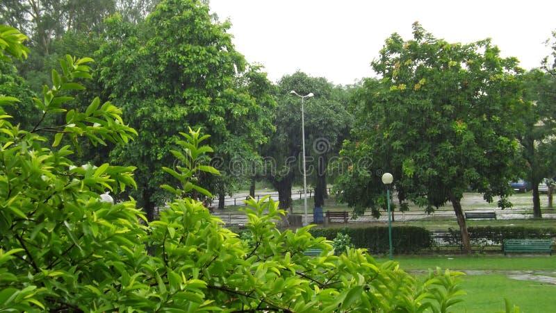 Beautiful raining weather in Chandigarh, India stock images