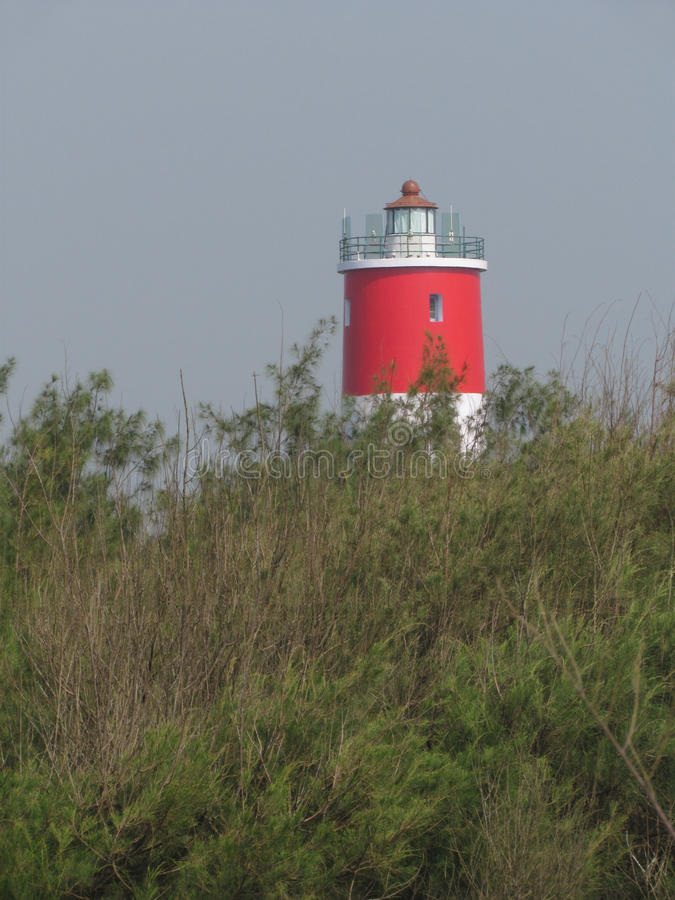 Red forest lighthouse stock photography