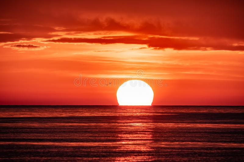 Beautiful red and orange sunset over the sea. The sun goes down over the sea. Two seagulls are flying against the sunset stock image