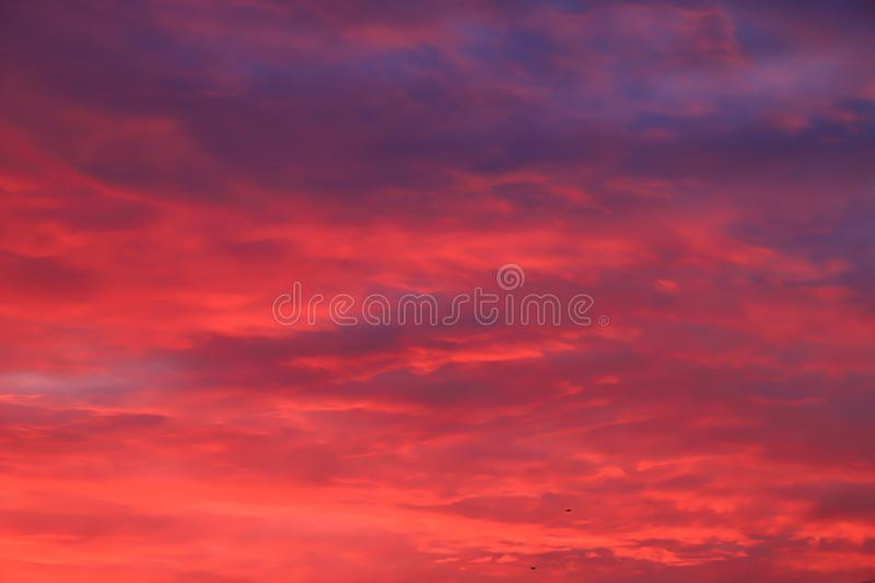 Beautiful red, pink feather clouds against the sky in sunrise in the morning. Picturesque magic background. royalty free stock image