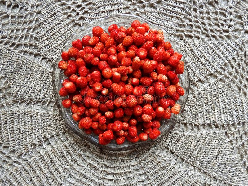Red ripe strawberry in plate  , Lithuania stock photo