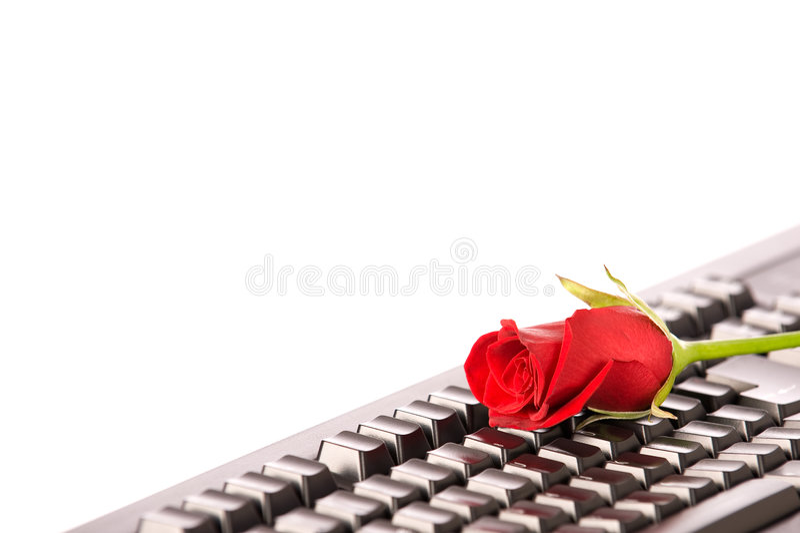 Download Beautiful Red Rose On Black Keyboard Stock Photo - Image: 7679340