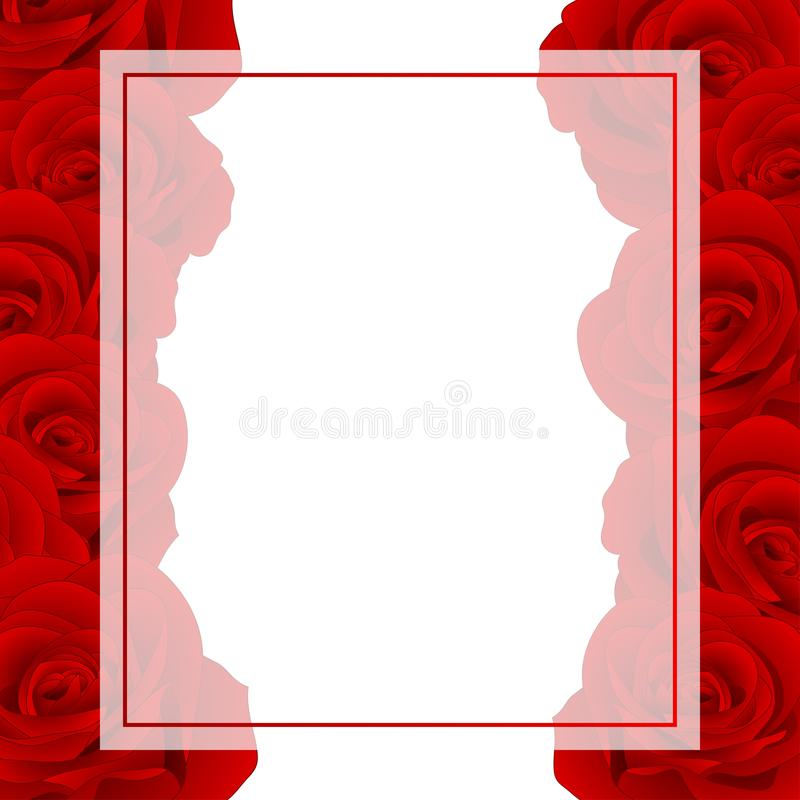 Beautiful Red Rose - Rosa Banner Card. Valentine Day. Vector Illustration royalty free illustration