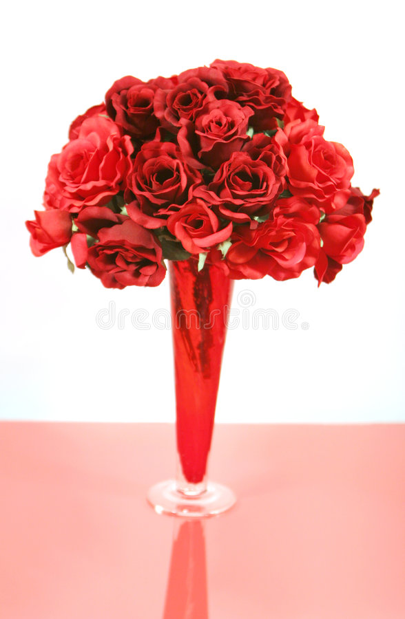 beautiful red roses in vase isolated on white royalty free