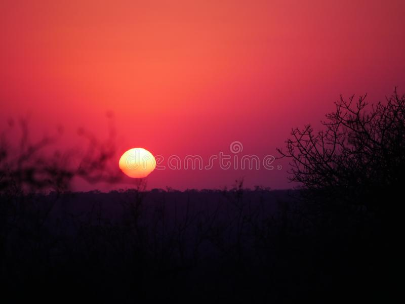 A beautiful red sunset at the Kruger National Park in South Africa royalty free stock photo