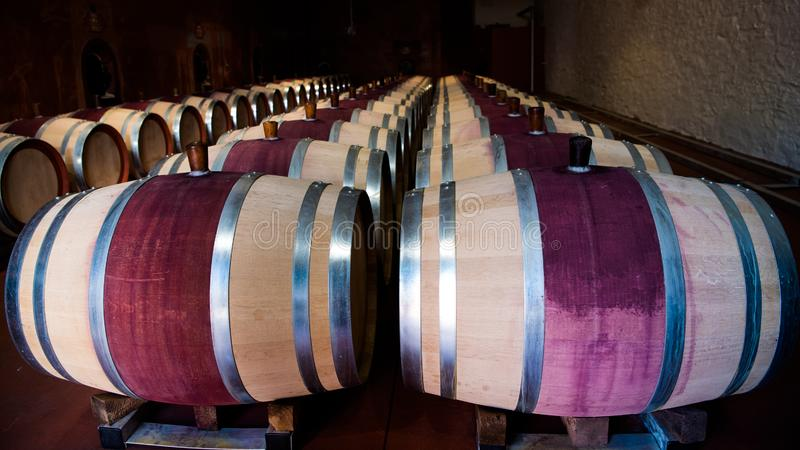 Wooden red wine barrels in wine cellar in Nuriootpa, Barossa Valley, South Australia. Beautiful red wine barrels in wine cellar in Australian wine Region Barossa royalty free stock photography