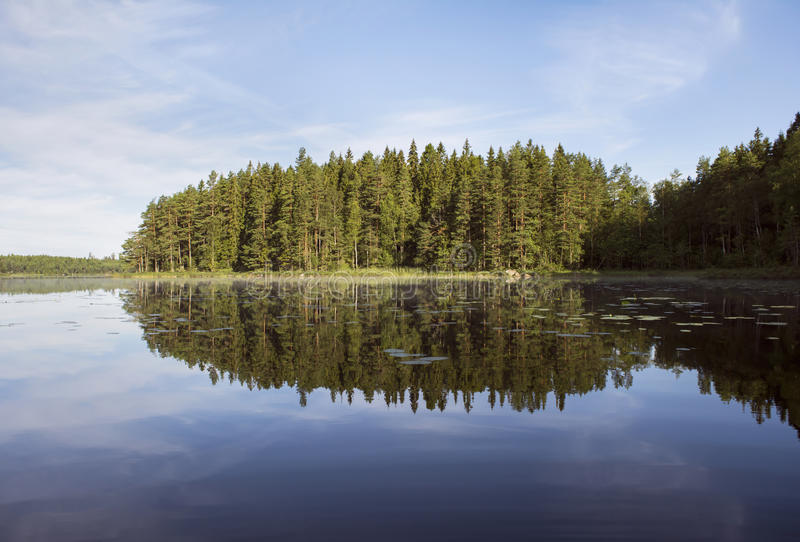 Beautiful reflection of forest in lake in summer. Beautiful reflection of forest in lake, a sunny summer morning. Värmland, Sweden stock images