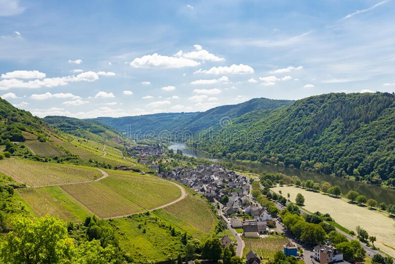 Beautiful, ripening vineyards in the spring season in western Germany, the Moselle river flowing between the hills. In the backgro. Und of blue sky and white stock image
