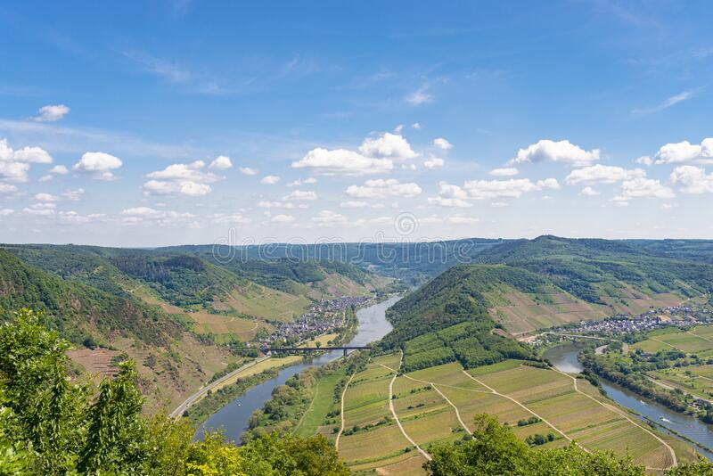 Beautiful, ripening vineyards in the spring season in western Germany, the Moselle river flowing between the hills. In the backgro. Und of blue sky and white royalty free stock image