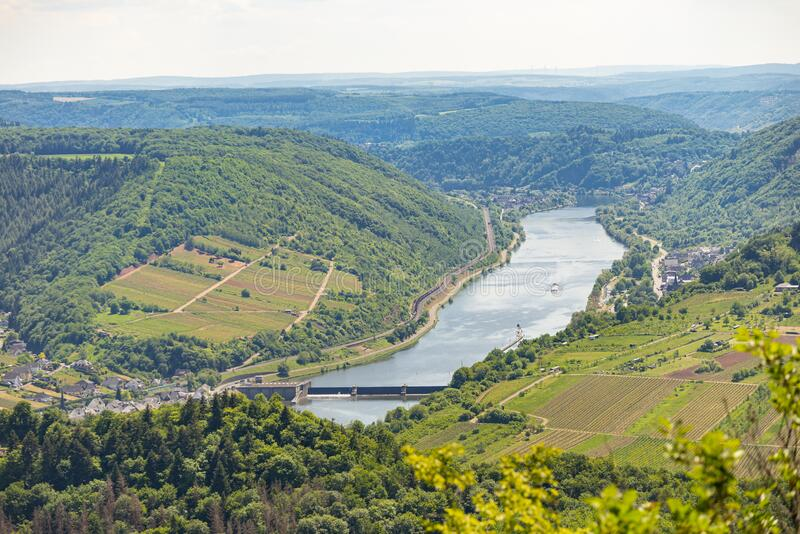 Beautiful, ripening vineyards in the spring season in western Germany, the Moselle river flowing between the hills. In the backgro. Und of blue sky and white stock photos