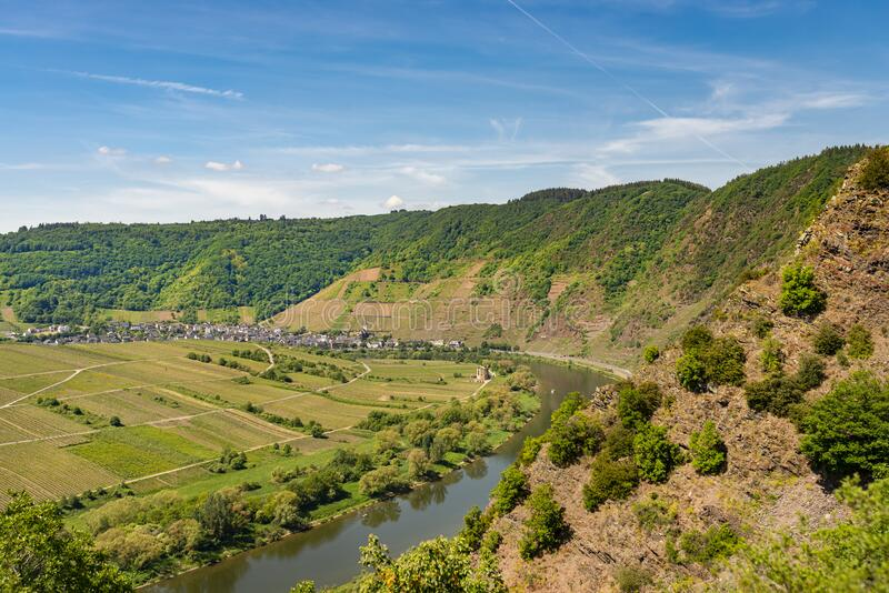 Beautiful, ripening vineyards in the spring season in western Germany, the Moselle river flowing between the hills. In the backgro. Und of blue sky and white stock photography