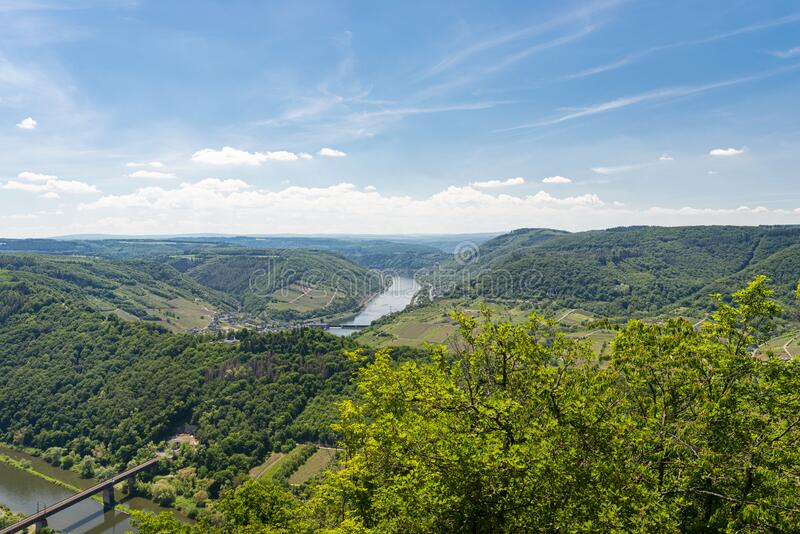 Beautiful, ripening vineyards in the spring season in western Germany, the Moselle river flowing between the hills. Visible railwa. Y bridge over the river royalty free stock photography