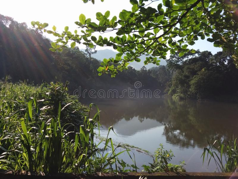 Beautiful River Kelani stock photography
