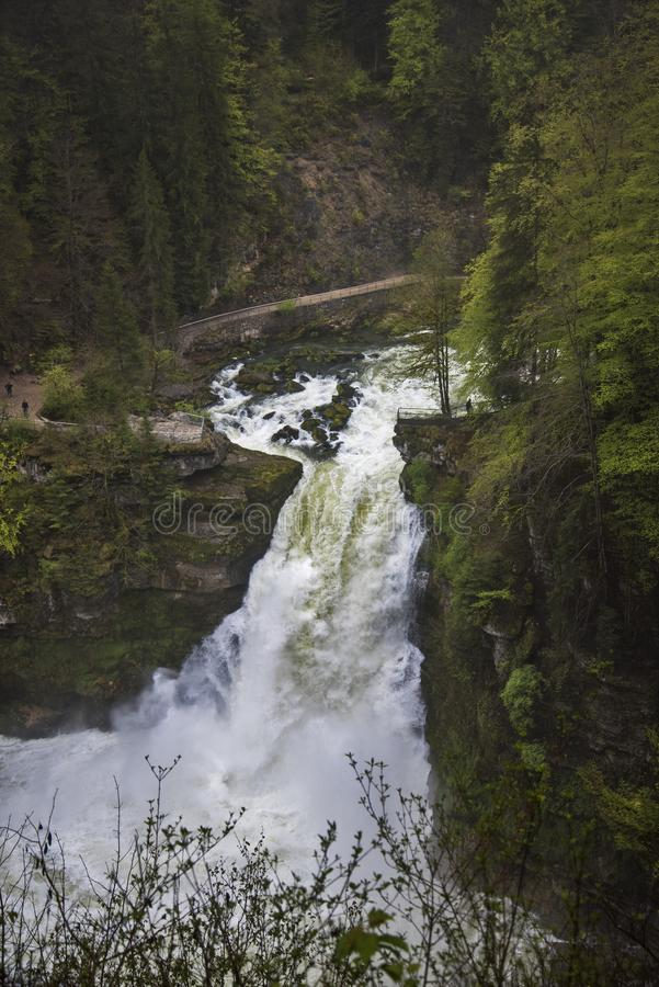 Magnificent waterfall into the forest stock image