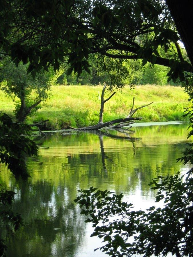 Beautiful rivers stock image