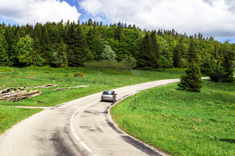 Beautiful road in green fields, natural landscape. Alsace royalty free stock photo