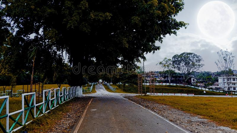 Beautiful road of IG Park royalty free stock photo