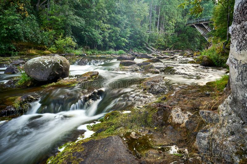 Beautiful rocky riverscene in forest royalty free stock photography