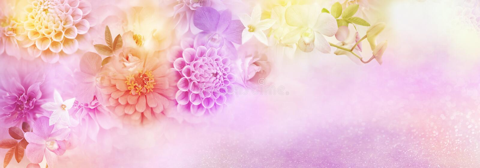 Beautiful romance dahlia, roses and orchid flowers border in colorful glitter background for header or banner royalty free illustration