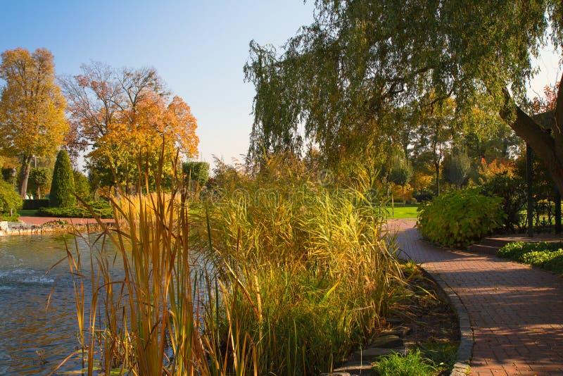 Beautiful romantic autumn park with colorful trees and lake. Autumn in park. Beautiful romantic autumn park with colorful trees and lake. Autumn in park stock photos