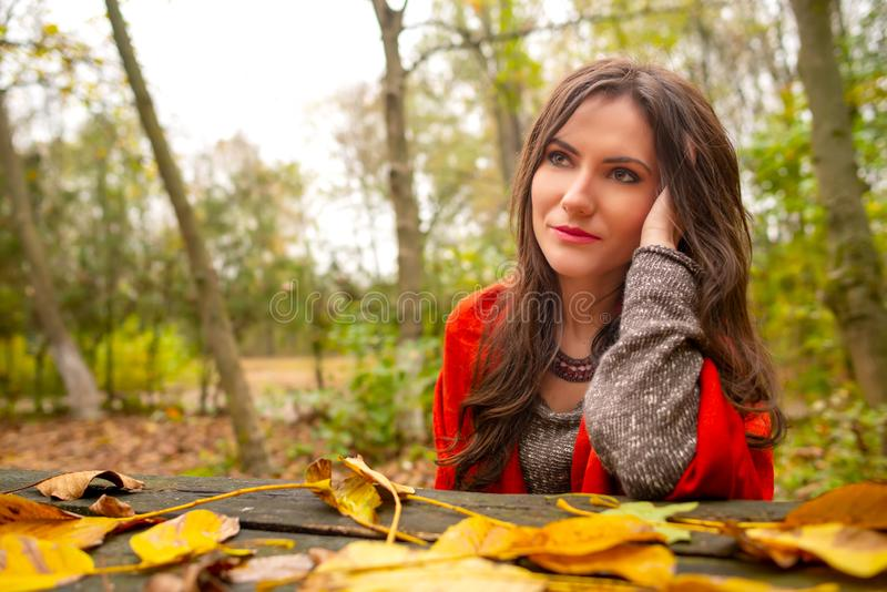 Beautiful romantic girl in park autumn scenery, sitting down at a wooden table covered with yellow leaves, looking away stock photo