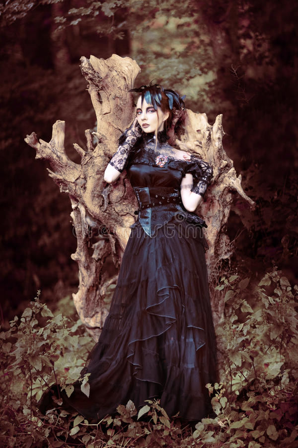 Beautiful, romantic gothic styled woman. With perfekt Make Up and Hair in a gothic feather dress royalty free stock images