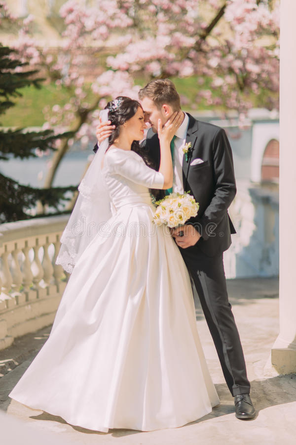 Beautiful romantic kiss of newlywed couple on terrace in sunny garden stock photography