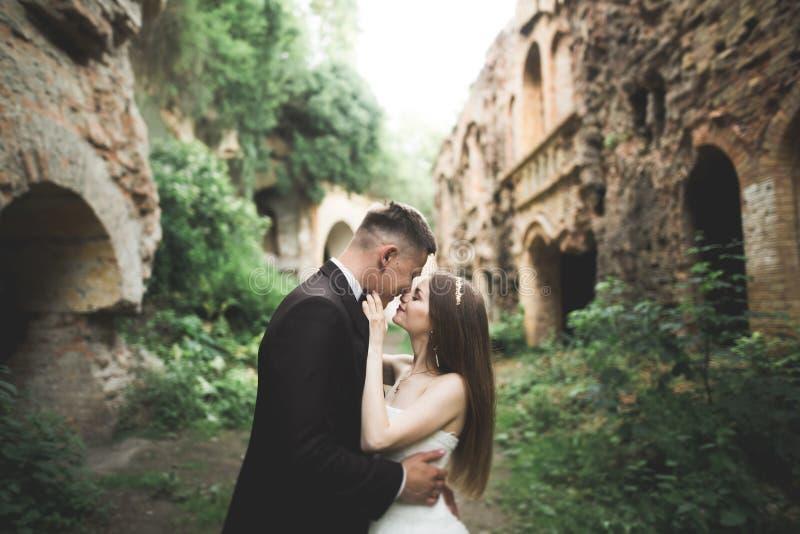 Beautiful romantic wedding couple of newlyweds hugging near old castle royalty free stock photos