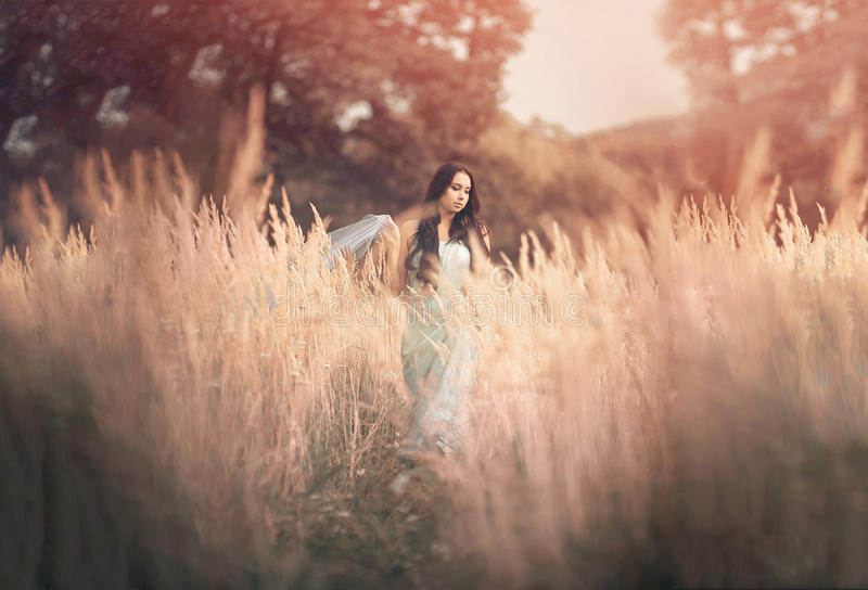 Beautiful, romantic woman in fairytale, wood nymph royalty free stock photos