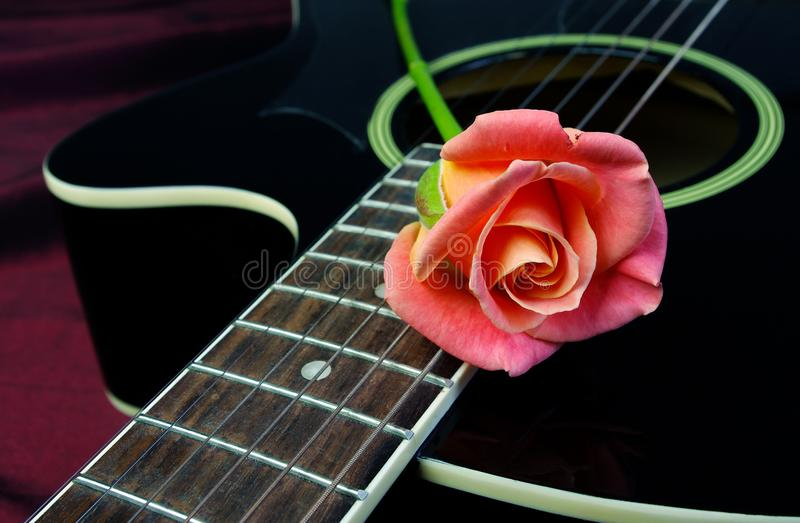 beautiful rose and black acoustic guitar. Symbols of love. royalty free stock images