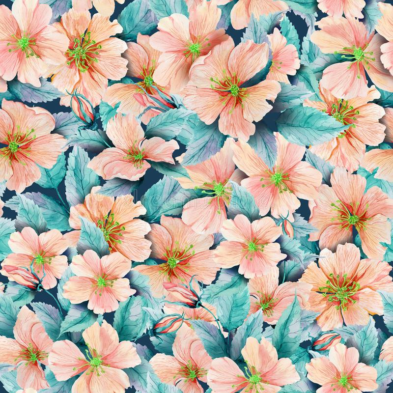 Beautiful rose hip flowers with leaves in seamless pattern. Colorful floral background. Watercolor painting. royalty free illustration