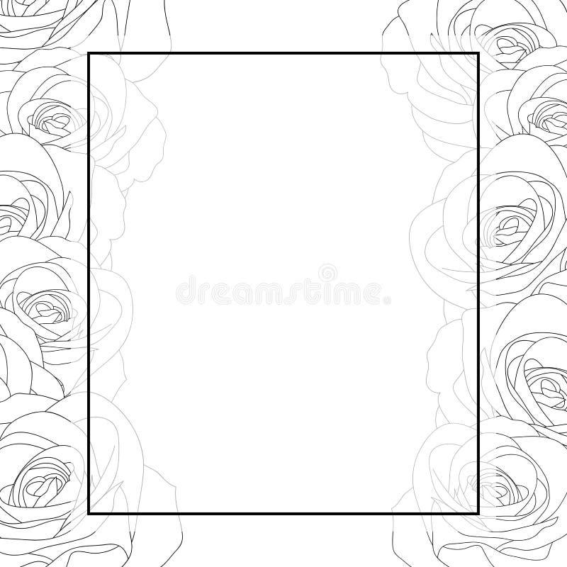 Beautiful Rose - Rosa Outline Banner Card. Valentine Day. Vector Illustration stock illustration