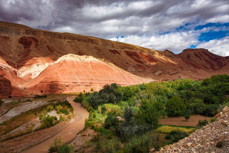 The beautiful Rose Valley - Vallee des Roses, near Ouarzazate, Morocco royalty free stock photos