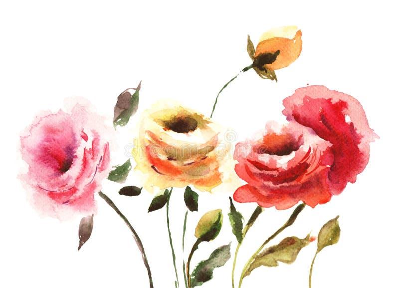 Beautiful Roses flowers. Watecolor illustration stock illustration